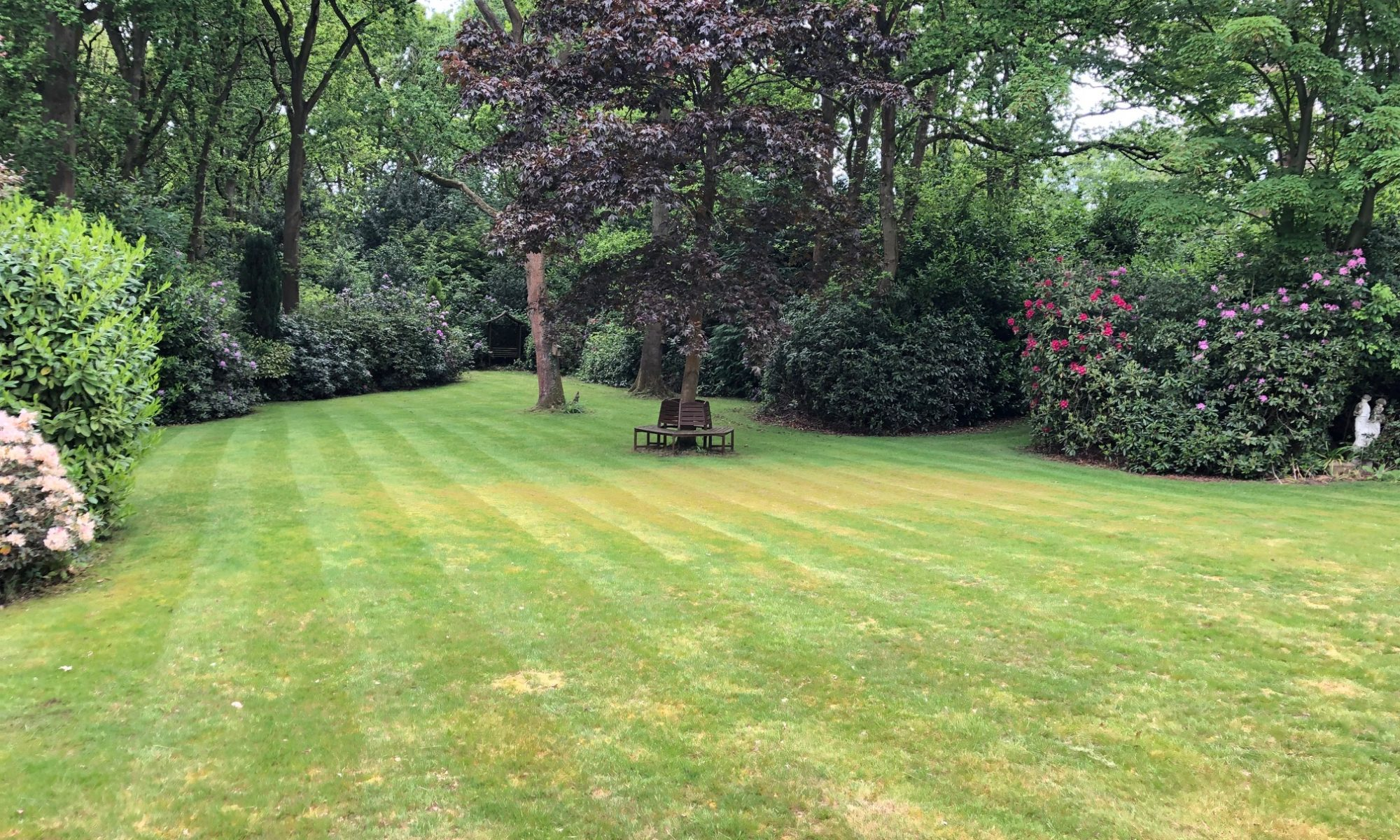 Beautiful large lawn in rural Norfolk