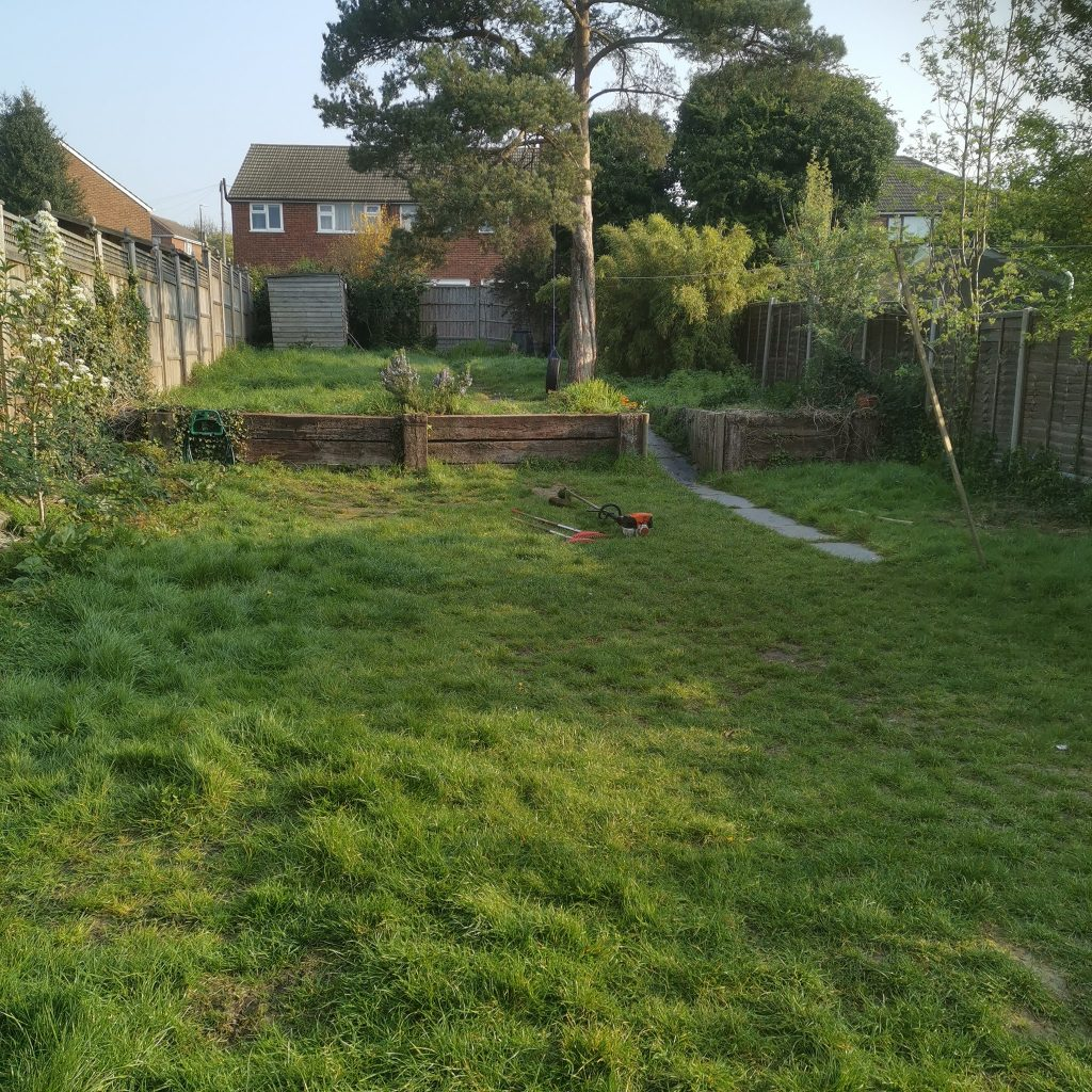 Eds garden tidy-up Sidcup moving out before