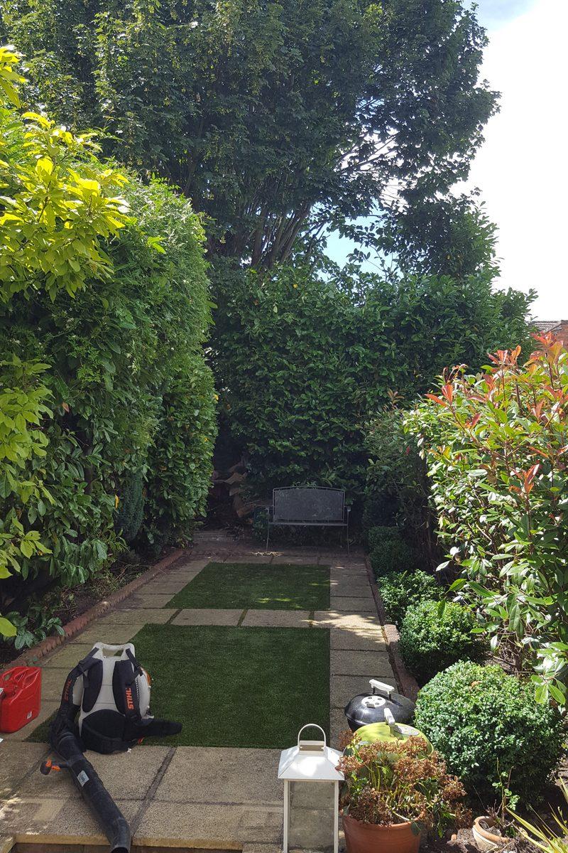 After photo of overgrown patio garden
