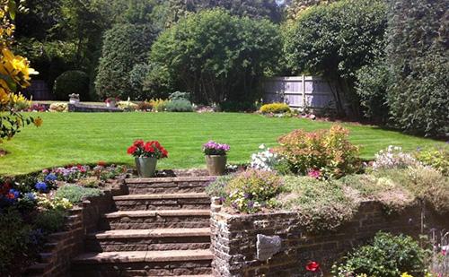 Regular Garden Maintenance in Brighton