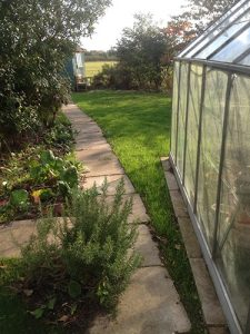 Garden Clearance Job done by Ed's Garden Maintenance
