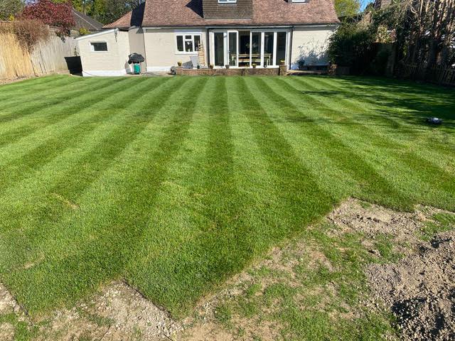 Gardener Turfing job almost laid