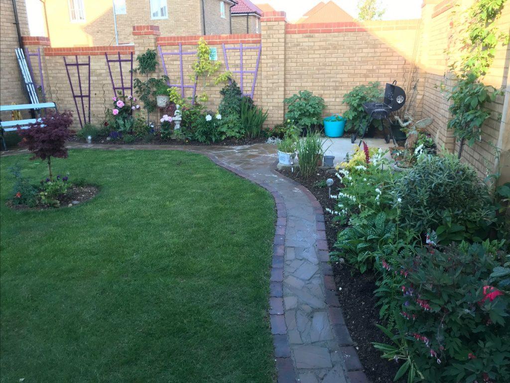 Matthew's garden transformation