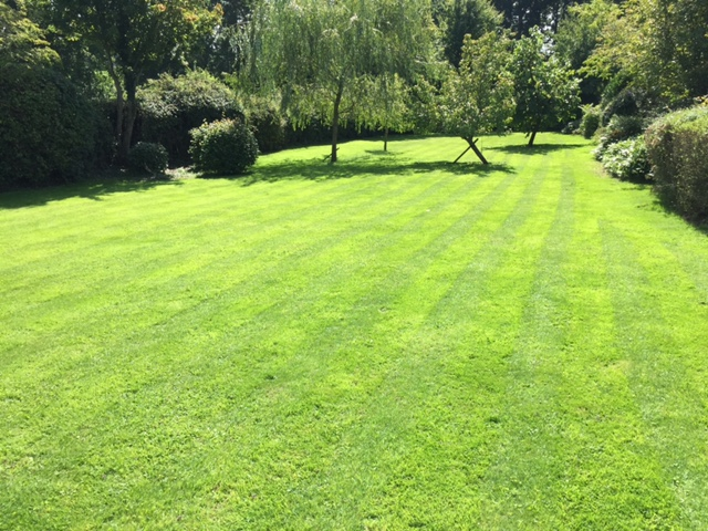 Peter's perfect stripy lawn